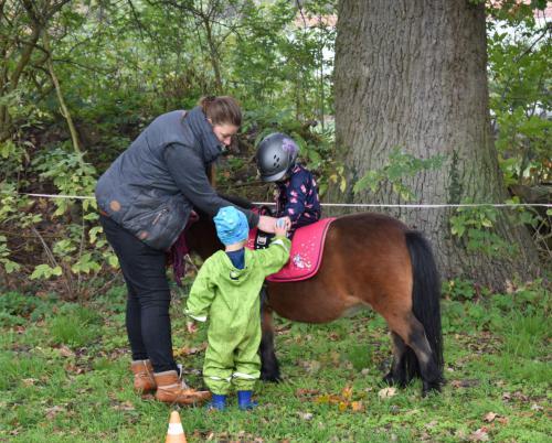 Kinderheim Kleine Strolche - Kontakt mit Ponys